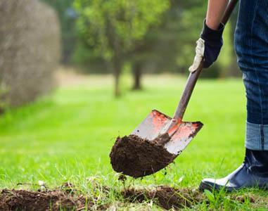 GENERAL MANAGEMENT CONSTRUCTION GROUP SRL, Amenajări grădini